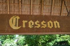 Bekend om kweek cresson